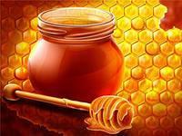 Мед из хлопчатника