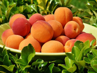Абрикосовая диета рай для сладкоежек