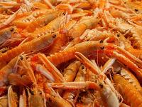 Салат «Подсолнух» и креветки в пищу