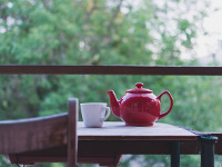 Зелёный чай почему стоит узнать про него поподробнее