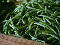 Зеленая фасоль польза и рецепты